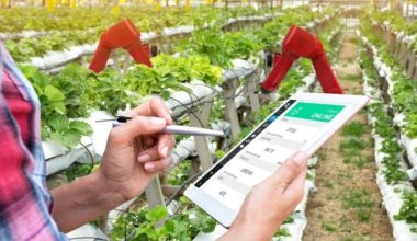 Person holding a tablet surrounded by plants