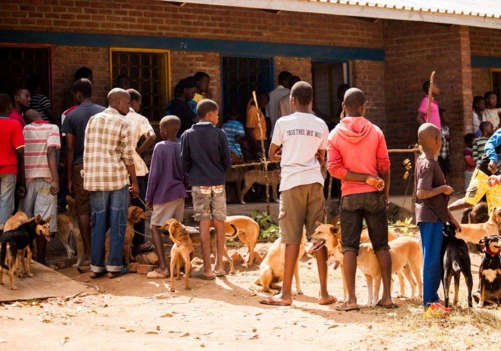 Image of Vaccine drop in centre, Malawi